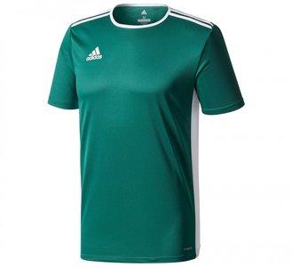 Adidas sportshirt donkergroen